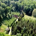 Csácsi Arborétum